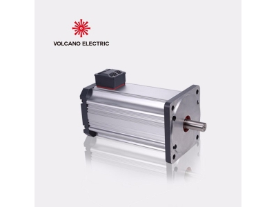 Customized 700W 24V Brushless DC Motor