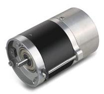 micro brushless DC motor.jpg