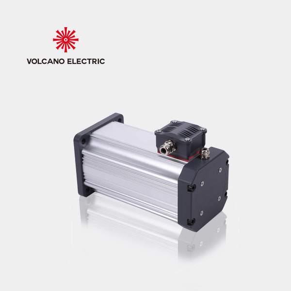 1100W Permanent magnet Motors