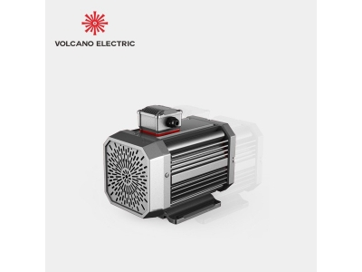 Variable Speed Permanent Magnet Motors